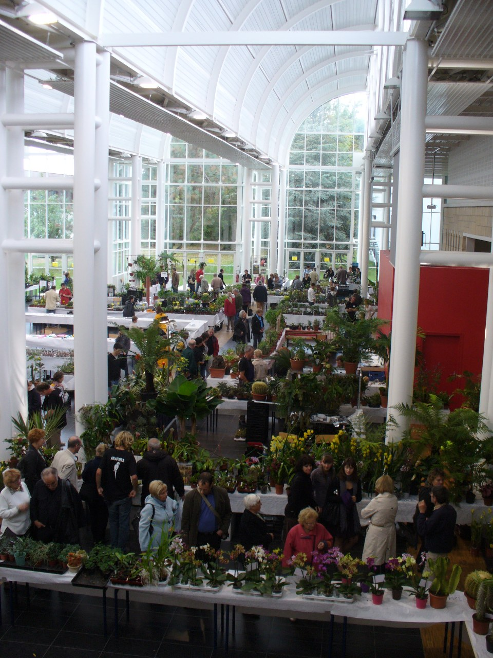 L'exposition florale s'est tenue dans l'Agora